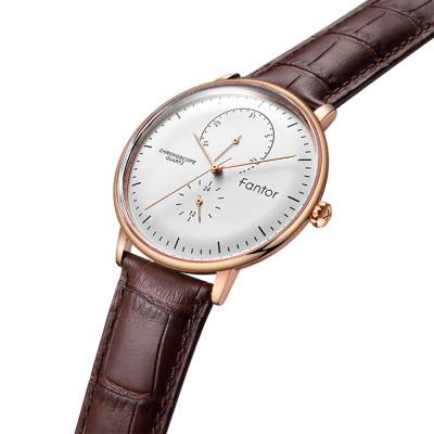 ساعت مچی مردانه اصل | برند فانتور | مدل WF1006G05